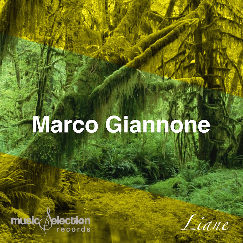Music Selection Records: Marco Giannone - Liane Importanti Support